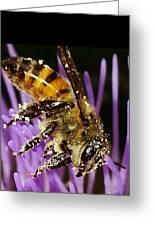 Purpel Nectar Greeting Card
