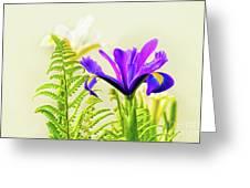 Purple And Blue Iris Greeting Card