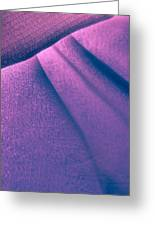 Purple And Bold Greeting Card