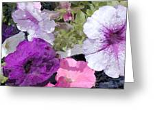 Purple And Pink Petunias Oil Painting Greeting Card