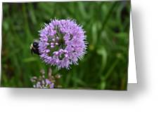Purple And The Bee Greeting Card