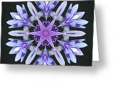 Purple And White Frosted Queen Mandala Greeting Card