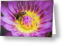 Purple And Yellow Lotus With A Bee Textured Greeting Card
