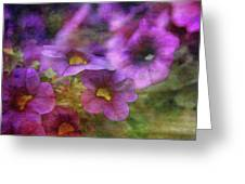 Purple And Yellow Morning 9121 Idp_2 Greeting Card