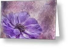 Purple Anemone Art Greeting Card