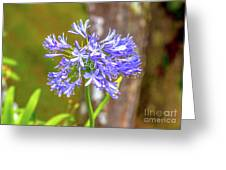 Purple Bells And Blossoms Greeting Card
