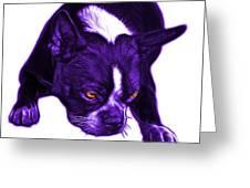 Purple Boston Terrier Art - 8384 - Wb Greeting Card