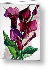Purple Callas Greeting Card