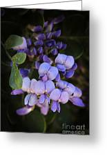 Purple Cascading Floral Art Greeting Card