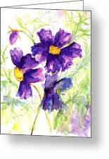 Purple Cosmos Greeting Card