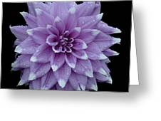 Purple Dahlia Cutout Greeting Card