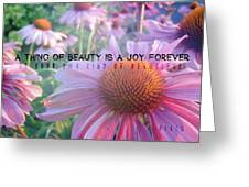 Purple Daisies Quote Greeting Card