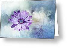 Purple Daisy Swirl Greeting Card