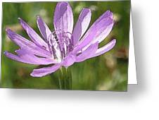 Purple Days Greeting Card