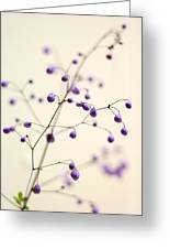 Purple Droplets Greeting Card