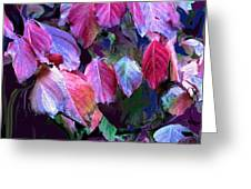 Purple Fall Leaves Greeting Card