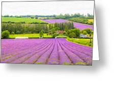 Purple Fields Of Love Greeting Card
