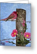 Purple Finch And Morning Glories Greeting Card
