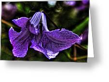 Purple Flower II Greeting Card
