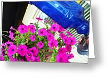 Purple Flowers On White Window 2 Greeting Card