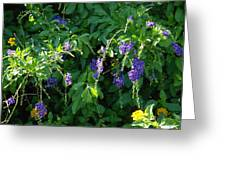 Purple Hanging Flowers Greeting Card