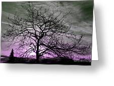 Purple Haze Across The Sky Greeting Card
