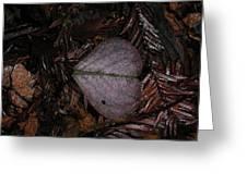 Purple Heart Shaped Leaf Greeting Card