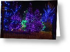 Purple Holiday Lights Greeting Card