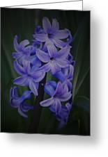 Purple Hyacinths - 2015 D Greeting Card