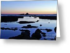Purple In Gale Beach. Algarve Greeting Card