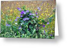 Purple In The Morning Greeting Card