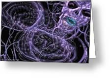 Purple Greeting Card by J P Lambert