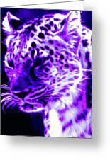 Purple Jaguar Greeting Card