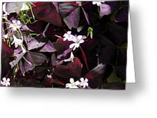 Purple Leaves With Tiny Pink Flowers Greeting Card