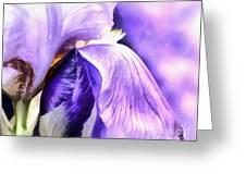 Purple Life Greeting Card