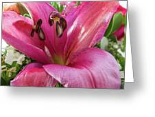 Purple Lilly In A Flower Bouquet Extreme Close-up Greeting Card
