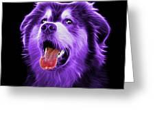 Purple Malamute Dog Art - 6536 - Bb Greeting Card