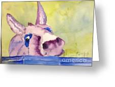 Purple Mule Greeting Card