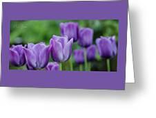 Purple Ones Greeting Card