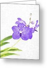 Purple Orchid Bloom Greeting Card