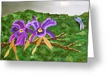 Purple Passion Greeting Card by Alanna Hug-McAnnally