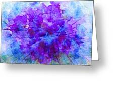 Purple Passion Hydrangea  Greeting Card