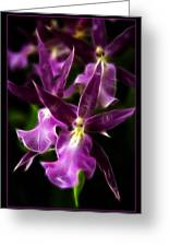 Purple Passion Greeting Card