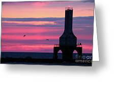 Purple Perfection In Port Greeting Card
