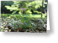 Purple Persists Greeting Card