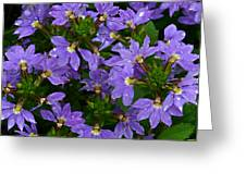 Purple Perspective Greeting Card