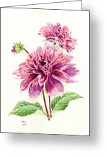 Purple Petal Extravaganza Greeting Card