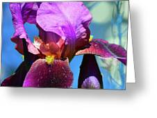 Purple Petals Four  Greeting Card