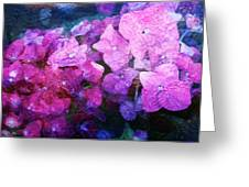Purple Pink Painterliness Greeting Card