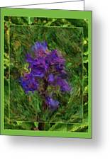 Purple Png Flower Greeting Card